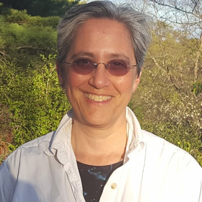 Decorative hero image for Nancy Krieger: Pioneering epidemiologist who uncovers the social determinants of health page.